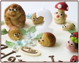 dort desertní JEŽEČEK